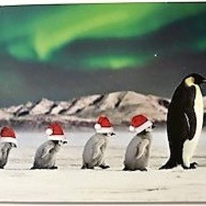 Christmas Card - Follow the Leader